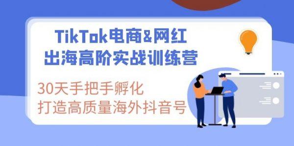 TikTok电商&网红出海高阶实战训练营