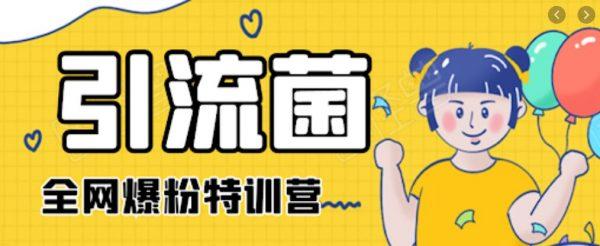 引流菌:2020全网爆粉特训营