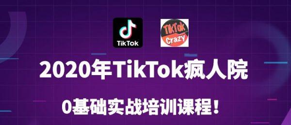 Tiktok零基础实战训练营