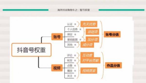 TikTok电商&网红出海高阶实战训练营 视频截图